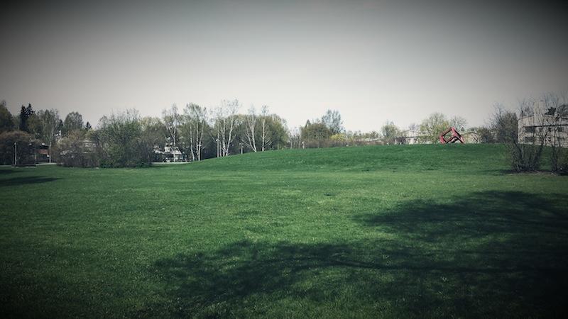 Tyhjä puisto suorastaan kutsuu kirmaamaan.